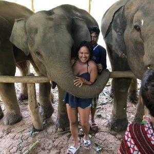 A woman hugging an Elephant,