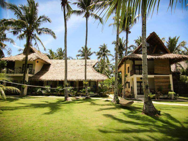 Front view of the house, coconut trees, blue sky, green grass,