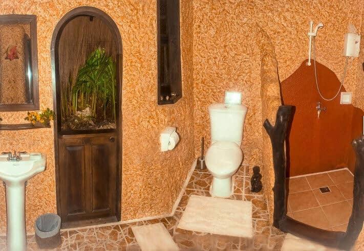 Plants, Toilet, Paper Towel, Sink, Garbage Bin, Mirror