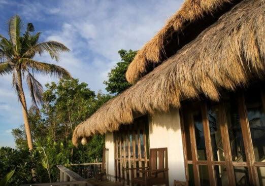 Blue Sky, Hut, Coconut Trees, Trees