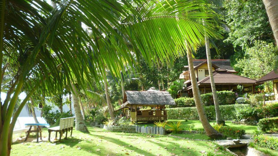 Huts, Cottages, Green Grass, Bushes, Coconut Trees, Palm trees, Ocean