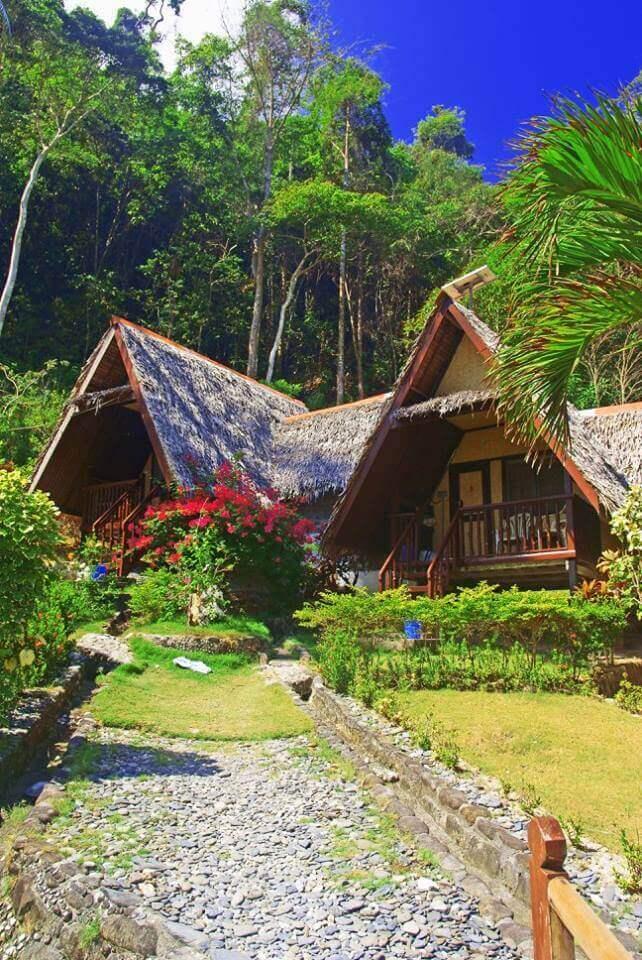 Huts, Plants,Trees, Green Grass, Blue Sky, Palm Trees, Flowers,Bush