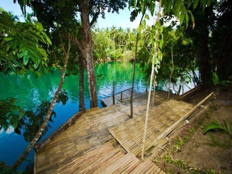 Lake, Trees, Bamboo Bridge