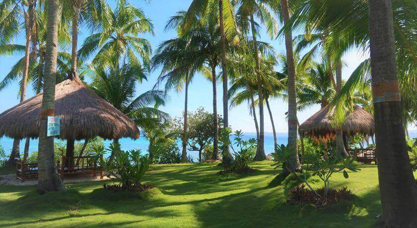 Beach. blue Sky, Clear blue ocean, Coconut Trees, Green grass, Huts