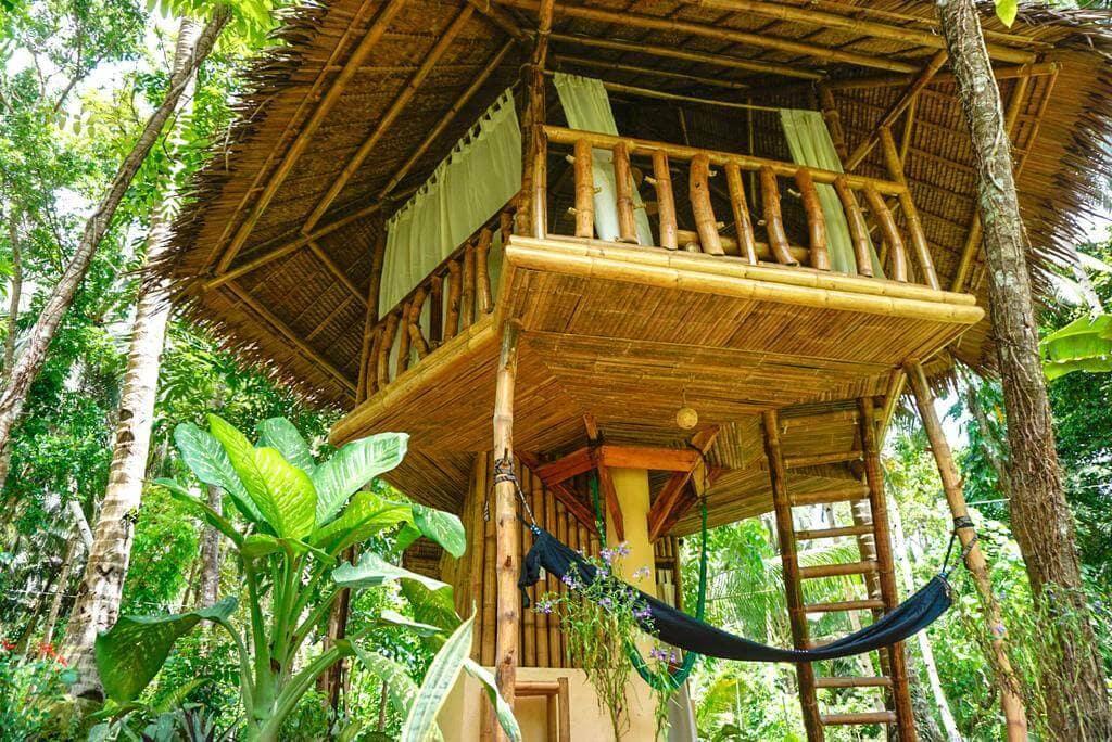 Coconut Trees, Cottage, Hammock